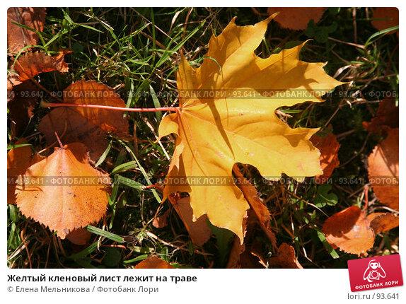 Желтый кленовый лист лежит на траве, фото № 93641, снято 23 сентября 2007 г. (c) Елена Мельникова / Фотобанк Лори