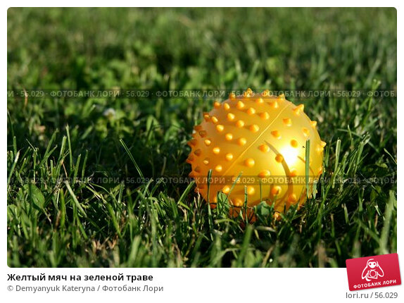 Желтый мяч на зеленой траве, фото № 56029, снято 27 июня 2007 г. (c) Demyanyuk Kateryna / Фотобанк Лори