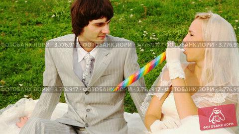 Купить «Жених и невеста в свадебном платье сидят на зеленой лужайке», видеоролик № 3776917, снято 18 января 2012 г. (c) Losevsky Pavel / Фотобанк Лори
