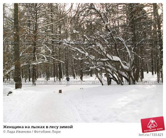 Купить «Женщина на лыжах в лесу зимой», фото № 133621, снято 17 февраля 2007 г. (c) Лада Иванова / Фотобанк Лори