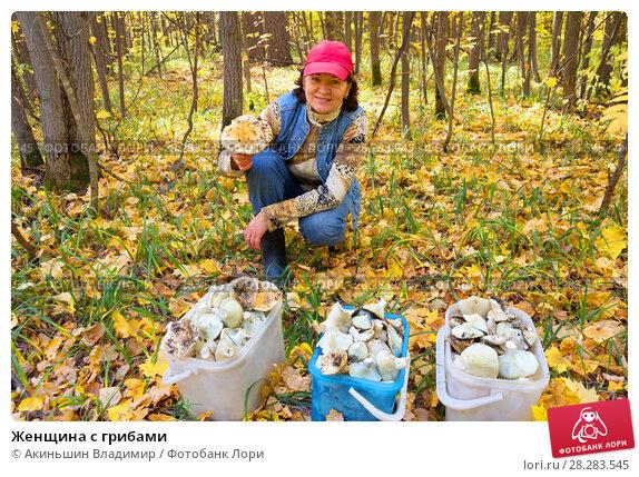 Купить «Женщина с грибами», фото № 28283545, снято 27 сентября 2014 г. (c) Акиньшин Владимир / Фотобанк Лори