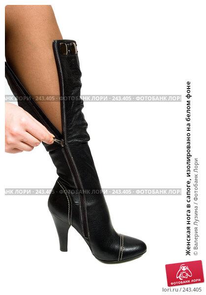 Женская нога в сапоге, изолировано на белом фоне, фото № 243405, снято 25 марта 2008 г. (c) Валерия Потапова / Фотобанк Лори