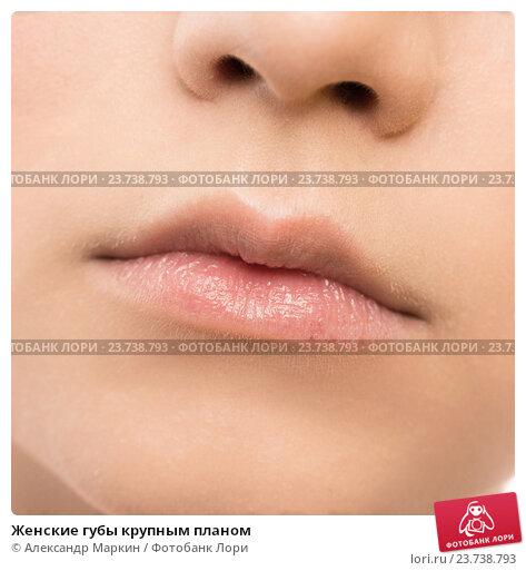 Крупные малые половые губы