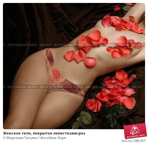 Женское тело, покрытое лепестками роз, фото № 288357, снято 7 ноября 2007 г. (c) Морозова Татьяна / Фотобанк Лори