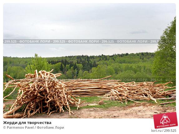 Жерди для творчества, фото № 299525, снято 11 мая 2008 г. (c) Parmenov Pavel / Фотобанк Лори