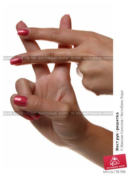 Жест рук - решетка, фото № 78709, снято 30 июля 2007 г. (c) Максим Соколов / Фотобанк Лори
