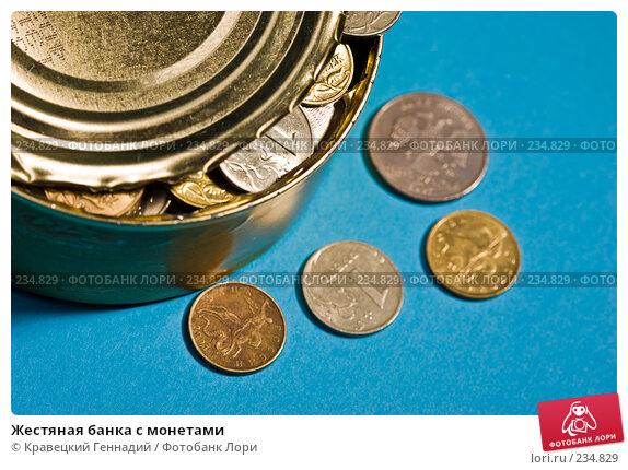 Жестяная банка с монетами, фото № 234829, снято 21 октября 2016 г. (c) Кравецкий Геннадий / Фотобанк Лори