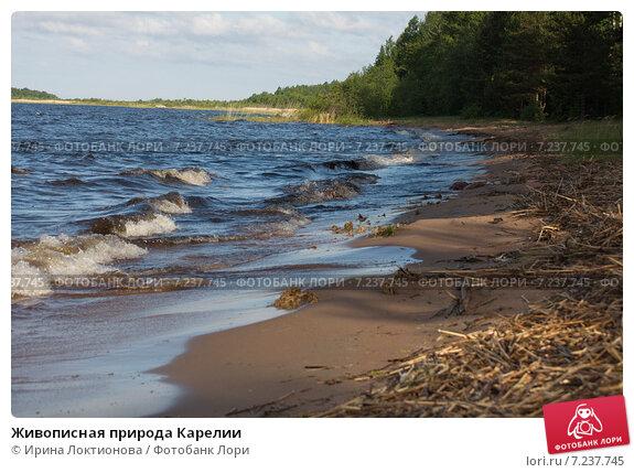 Живописная природа Карелии. Стоковое фото, фотограф Ирина Локтионова / Фотобанк Лори