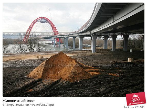 Живописный мост, фото № 223941, снято 15 марта 2008 г. (c) Игорь Веснинов / Фотобанк Лори