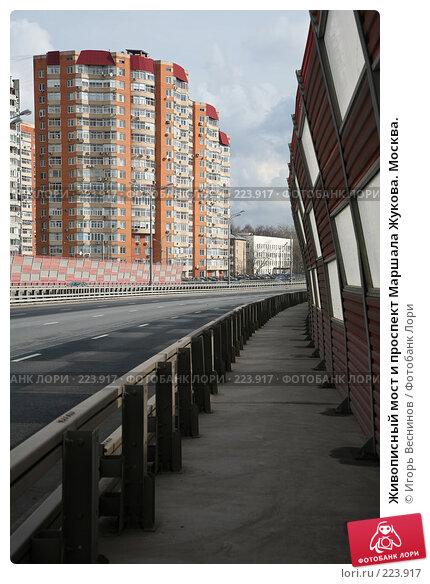 Живописный мост и проспект Маршала Жукова. Москва., фото № 223917, снято 15 марта 2008 г. (c) Игорь Веснинов / Фотобанк Лори