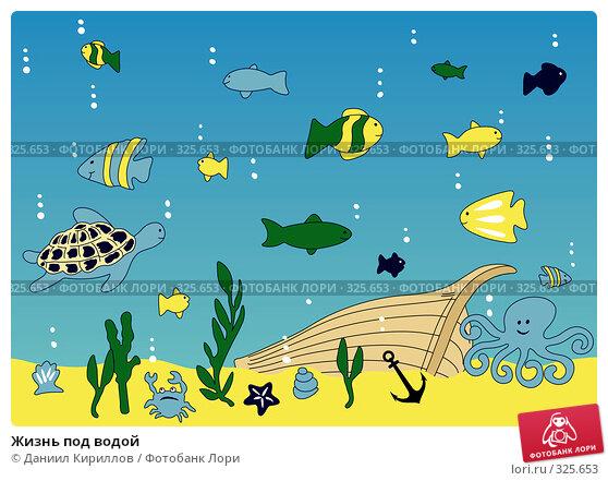 Жизнь под водой, иллюстрация № 325653 (c) Даниил Кириллов / Фотобанк Лори