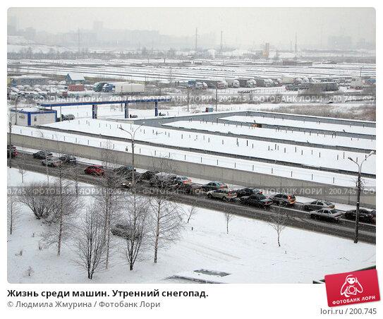 Купить «Жизнь среди машин. Утренний снегопад.», фото № 200745, снято 4 февраля 2008 г. (c) Людмила Жмурина / Фотобанк Лори