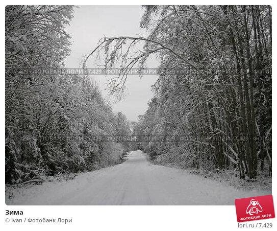 Купить «Зима», фото № 7429, снято 24 декабря 2005 г. (c) Ivan / Фотобанк Лори