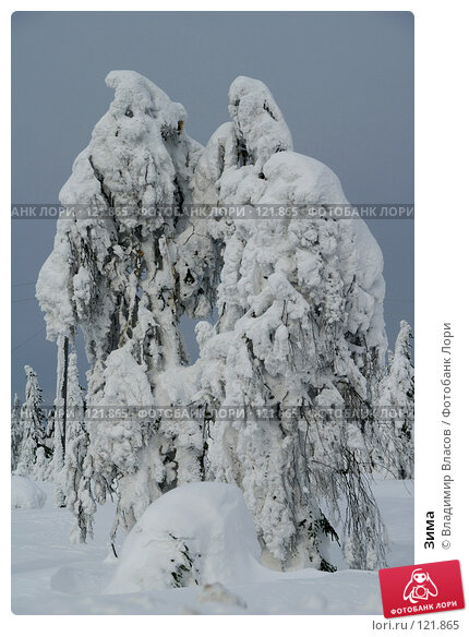 Купить «Зима», фото № 121865, снято 28 февраля 2007 г. (c) Владимир Власов / Фотобанк Лори