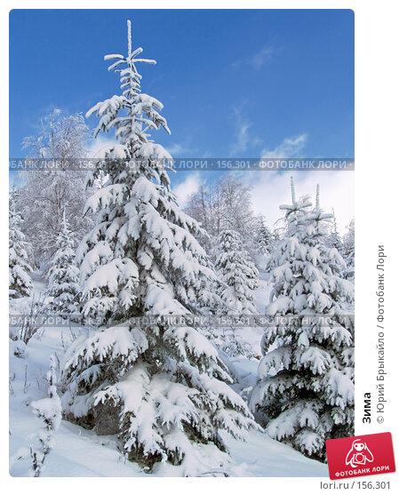 Зима, фото № 156301, снято 3 января 2005 г. (c) Юрий Брыкайло / Фотобанк Лори
