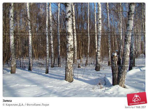 Зима, фото № 168357, снято 5 января 2008 г. (c) Карелин Д.А. / Фотобанк Лори