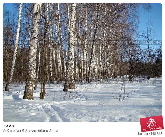Зима, фото № 168365, снято 5 января 2008 г. (c) Карелин Д.А. / Фотобанк Лори