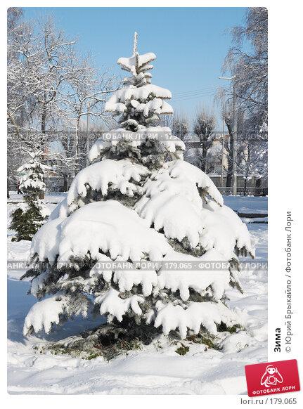Купить «Зима», фото № 179065, снято 18 ноября 2007 г. (c) Юрий Брыкайло / Фотобанк Лори