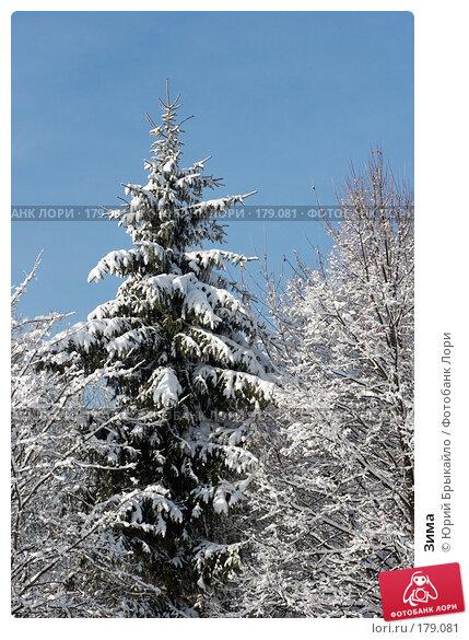 Зима, фото № 179081, снято 18 ноября 2007 г. (c) Юрий Брыкайло / Фотобанк Лори