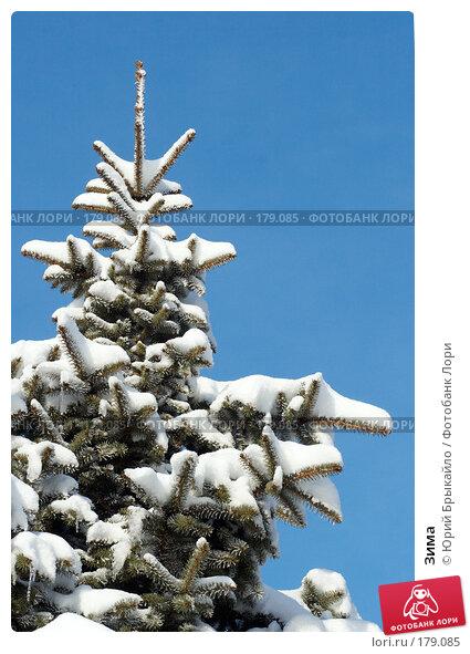 Зима, фото № 179085, снято 18 ноября 2007 г. (c) Юрий Брыкайло / Фотобанк Лори