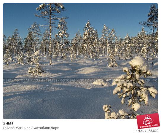 Зима, фото № 188829, снято 27 января 2008 г. (c) Anna Marklund / Фотобанк Лори