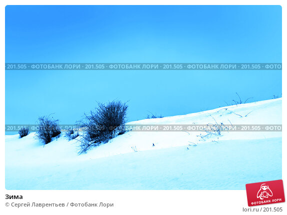 Зима, фото № 201505, снято 9 февраля 2008 г. (c) Сергей Лаврентьев / Фотобанк Лори