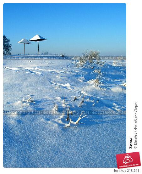 Зима, фото № 218241, снято 25 июля 2017 г. (c) ElenArt / Фотобанк Лори