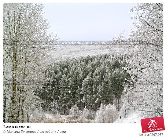 Зима и сосны, фото № 297957, снято 19 января 2008 г. (c) Максим Пименов / Фотобанк Лори
