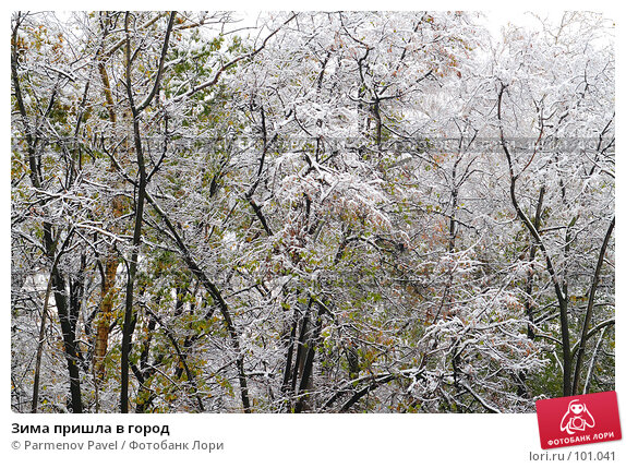 Зима пришла в город, фото № 101041, снято 16 октября 2007 г. (c) Parmenov Pavel / Фотобанк Лори