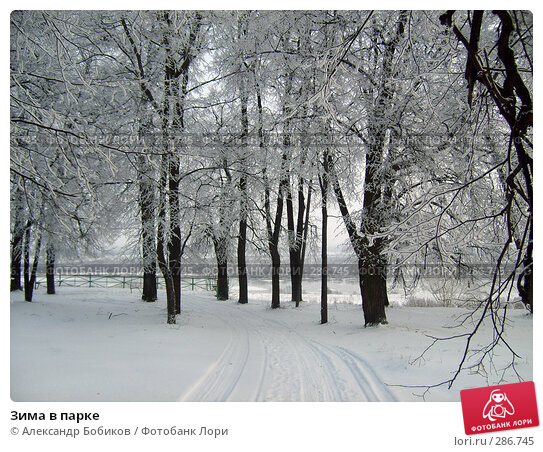 Зима в парке, фото № 286745, снято 27 января 2007 г. (c) Александр Бобиков / Фотобанк Лори