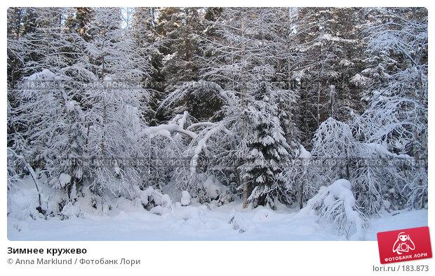 Зимнее кружево, фото № 183873, снято 26 января 2005 г. (c) Anna Marklund / Фотобанк Лори