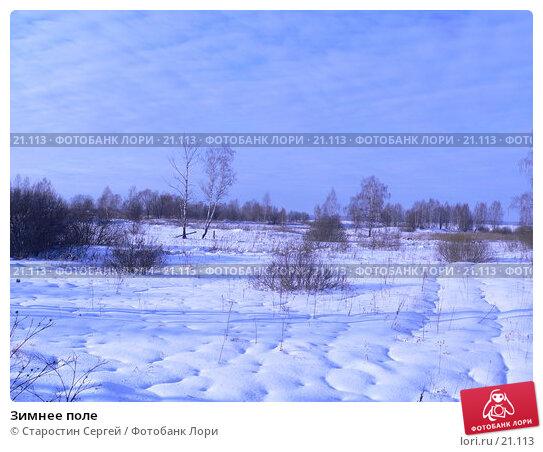 Зимнее поле, фото № 21113, снято 16 февраля 2007 г. (c) Старостин Сергей / Фотобанк Лори