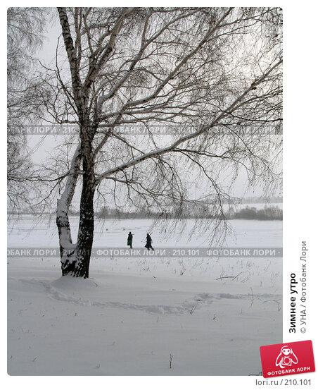 Зимнее утро, фото № 210101, снято 17 ноября 2007 г. (c) УНА / Фотобанк Лори
