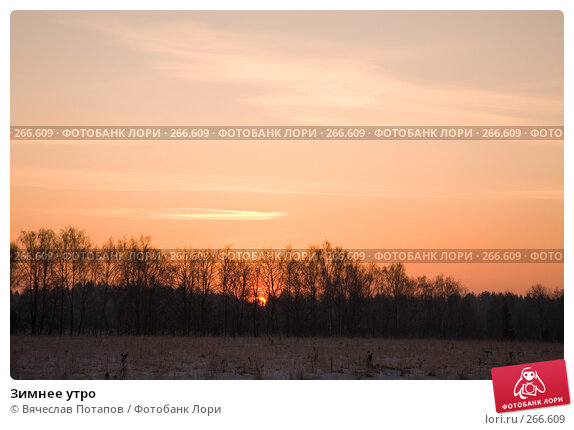 Зимнее утро, фото № 266609, снято 1 января 2008 г. (c) Вячеслав Потапов / Фотобанк Лори