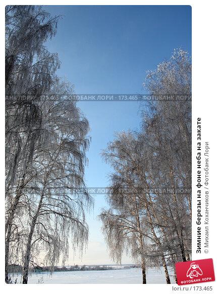 Зимние березы на фоне неба на закате, фото № 173465, снято 8 января 2008 г. (c) Михаил Коханчиков / Фотобанк Лори