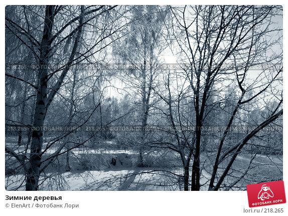 Купить «Зимние деревья», фото № 218265, снято 25 апреля 2018 г. (c) ElenArt / Фотобанк Лори