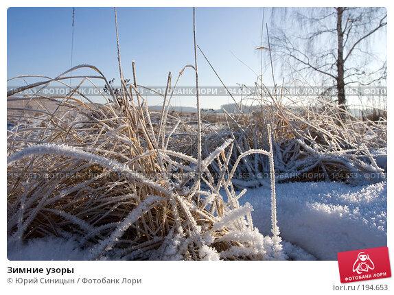 Зимние узоры, фото № 194653, снято 8 января 2008 г. (c) Юрий Синицын / Фотобанк Лори
