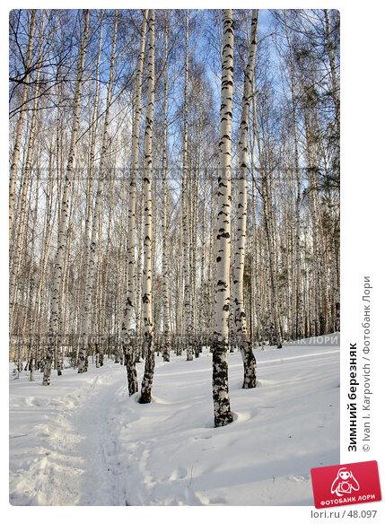 Купить «Зимний березняк», фото № 48097, снято 3 марта 2007 г. (c) Ivan I. Karpovich / Фотобанк Лори