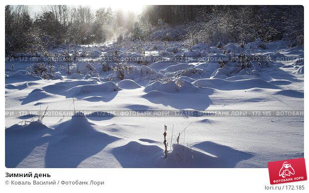 Зимний день, фото № 172185, снято 10 ноября 2007 г. (c) Коваль Василий / Фотобанк Лори
