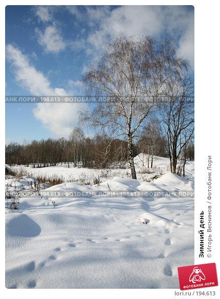 Зимний день, фото № 194613, снято 3 февраля 2008 г. (c) Игорь Веснинов / Фотобанк Лори