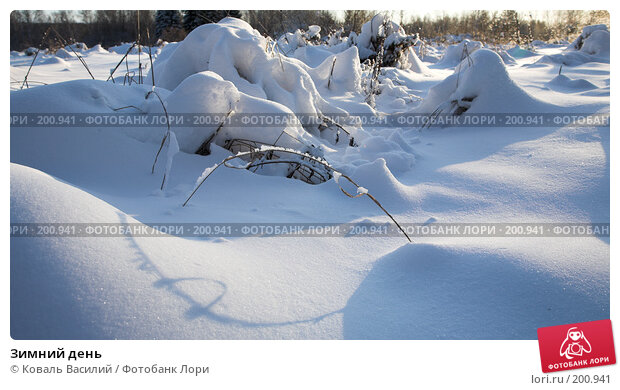 Купить «Зимний день», фото № 200941, снято 10 ноября 2007 г. (c) Коваль Василий / Фотобанк Лори