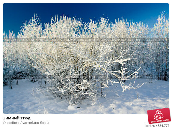 Купить «Зимний этюд», фото № 334777, снято 23 января 2007 г. (c) podfoto / Фотобанк Лори