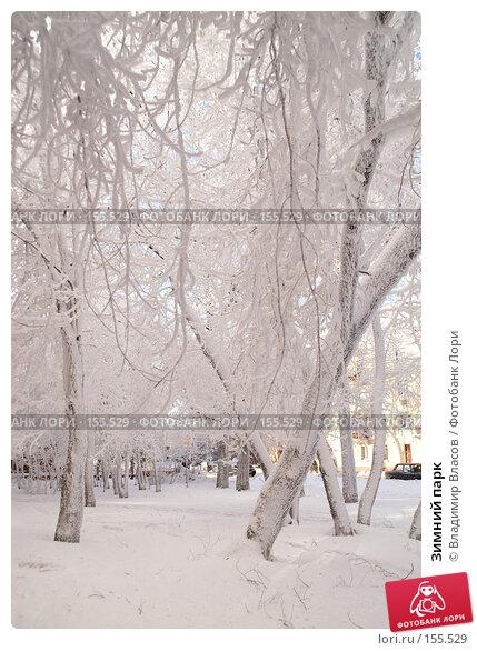 Зимний парк, фото № 155529, снято 23 января 2005 г. (c) Владимир Власов / Фотобанк Лори