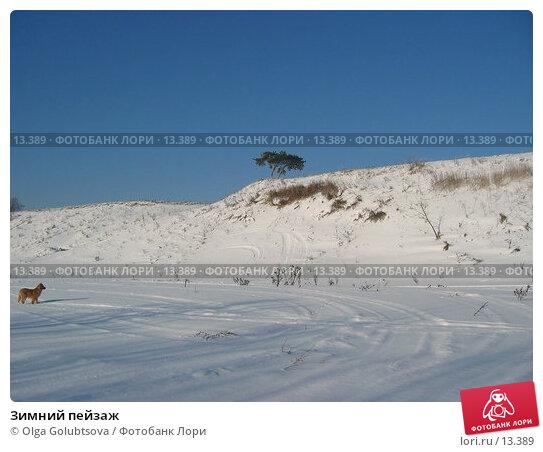 Зимний пейзаж, фото № 13389, снято 5 февраля 2005 г. (c) Olga Golubtsova / Фотобанк Лори