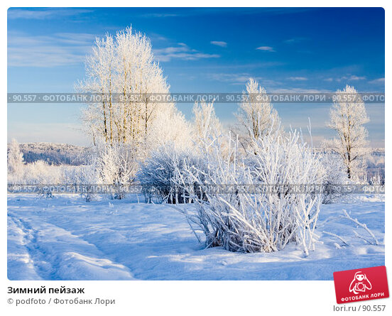 Зимний пейзаж, фото № 90557, снято 24 января 2007 г. (c) podfoto / Фотобанк Лори