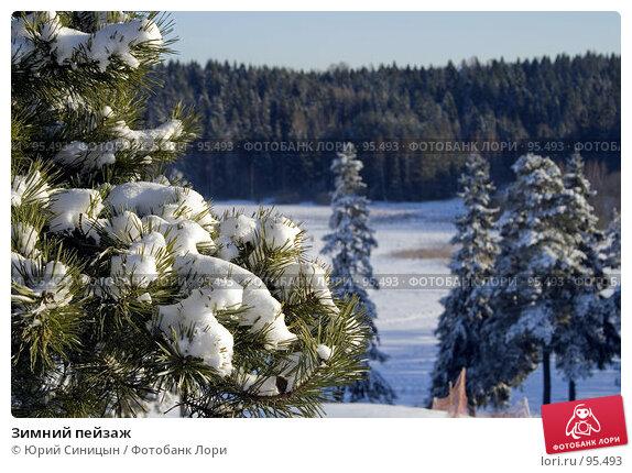 Зимний пейзаж, фото № 95493, снято 12 февраля 2007 г. (c) Юрий Синицын / Фотобанк Лори