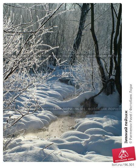 Зимний пейзаж, фото № 96301, снято 12 февраля 2007 г. (c) Parmenov Pavel / Фотобанк Лори