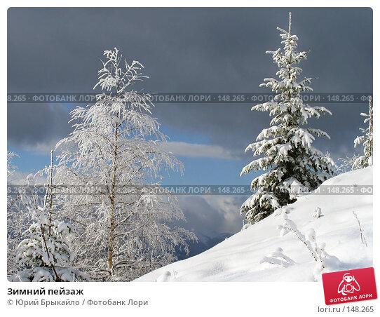 Зимний пейзаж, фото № 148265, снято 20 января 2017 г. (c) Юрий Брыкайло / Фотобанк Лори