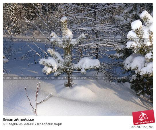 Зимний пейзаж, фото № 158785, снято 23 декабря 2007 г. (c) Владимир Ильин / Фотобанк Лори