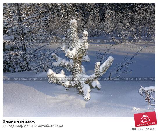 Зимний пейзаж, фото № 158801, снято 23 декабря 2007 г. (c) Владимир Ильин / Фотобанк Лори